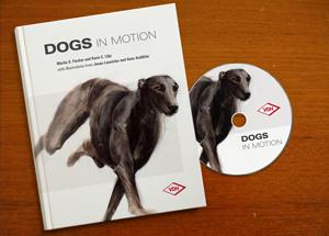 Hunde in Bewegung